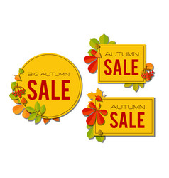 Sale banner set with bright autumn leaves isolated vector
