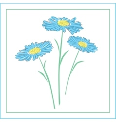 blue daisies on a white background vector image