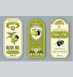 Oilve oil labels vector image vector image