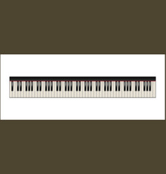 Piano keyboard 88 keys isolated vector