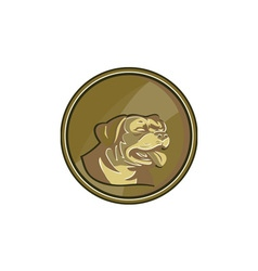 Rottweiler guard dog head gold medallion retro vector