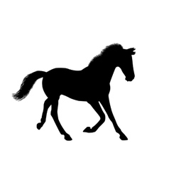 Silhouette of a running horse vector