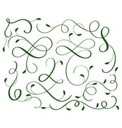green set of vintage flourish decorative art vector image vector image