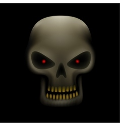 skull in the dark vector image vector image