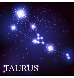 Taurus zodiac sign of the beautiful bright stars vector