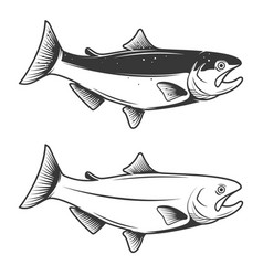 trout fish icons isolated on white background vector image vector image