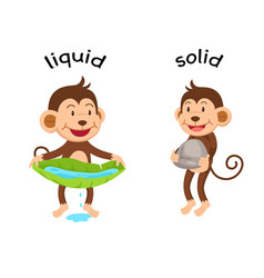 Opposite words liquid and solid vector