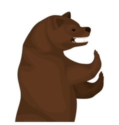 Color image with half body bear vector