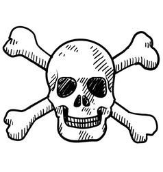 doodle skull bones vector image