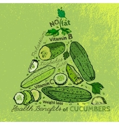Hand drawn cucumber 01 a vector