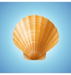 Realistic scallop seashell isolated background vector image