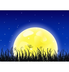 Huge yellow moon with grass meadow vector image vector image