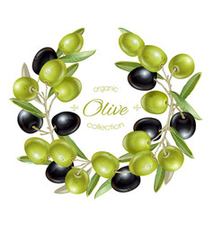 Olive wreath banners vector image vector image