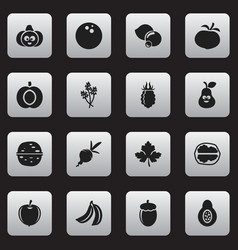 Set of 16 editable vegetable icons includes vector