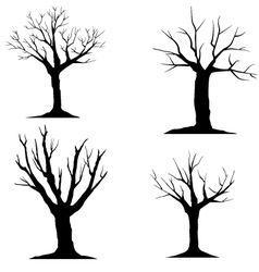 tree-without-leaves-silhouette vector image vector image