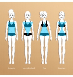 Female body types vector