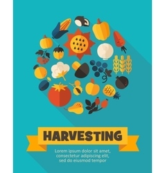 Harvest fruits and vegetable poster vector