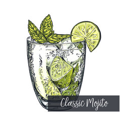 Classic mojito colorful sketch vector