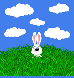 funny easter rabbit on white background vector image vector image