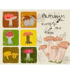 Vintage poster with autumn plants and fungus vector