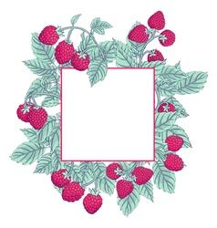 Raspberry frame vector