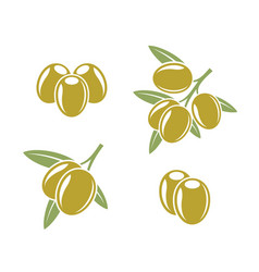 Abstract olives and marinated olives vector