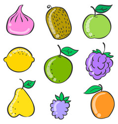 colorful fruit of doodle style vector image vector image