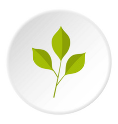 green cherry leaves icon circle vector image