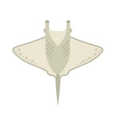 Manta ray or stingray vector