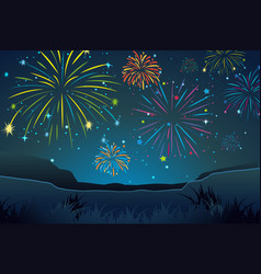 Night scene with fireworks in sky vector