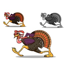 Running turkey bird vector image