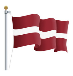 waving latvia flag isolated on a white background vector image vector image