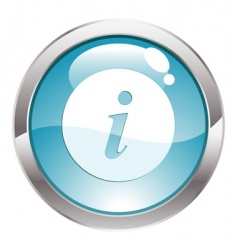 gloss button with sign info vector image