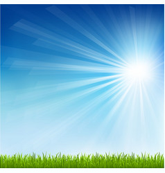 Green grass and sun beam vector