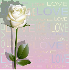 Colored background from letters love and a rose vector image vector image