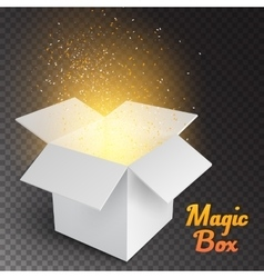 Magic Box with Confetti and Magic Light Realistic vector image vector image