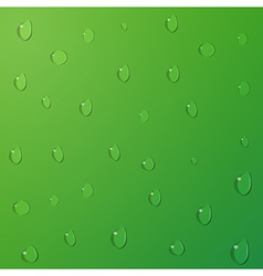 Water drops on green background vector