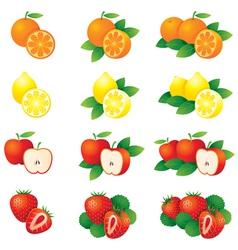 Orange Lemon Apple Strawberry vector image