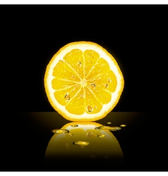Lemon Slice On Black Background vector image