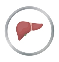Liver icon in cartoon style isolated on white vector