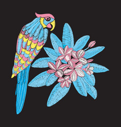 Pattern with parrot and flower plumeria embroidery vector