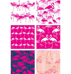Set of Seamless patterns with flamingoes vector image vector image