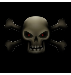 Skull with bones in dark vector