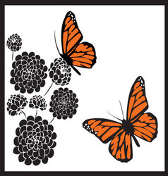 Monarch butterflies vector