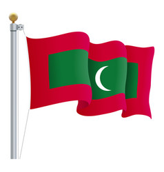 waving maldives flag isolated on a white vector image