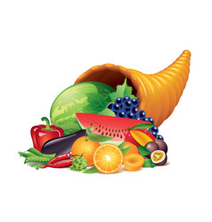 cornucopia isolated vector image