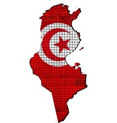 Tunisia map with flag inside vector