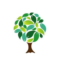 Decorative tree with green leaves vector image vector image