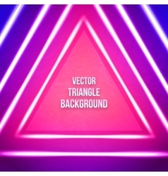 Geometric Background With Triangle Hipster vector image vector image