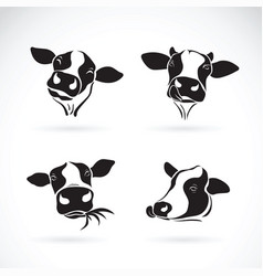 Group of a cow head design on white background vector